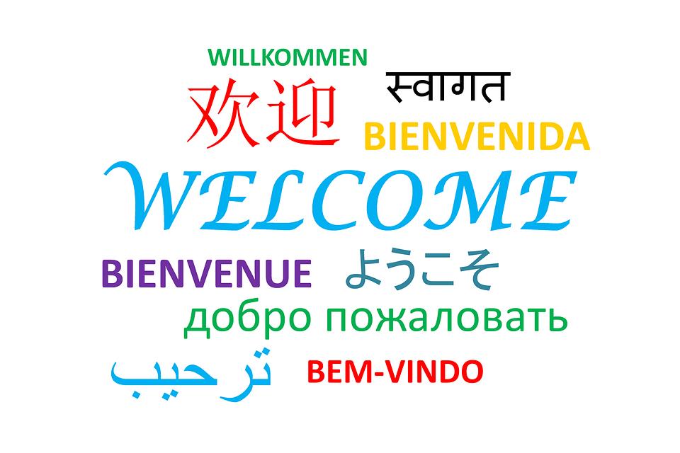 sejour linguistique