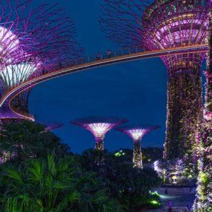 créer société à singapour